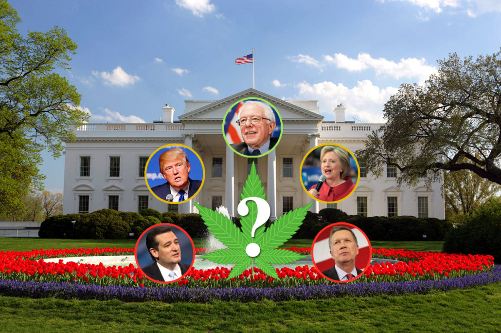 Candidates in favor of legalization?