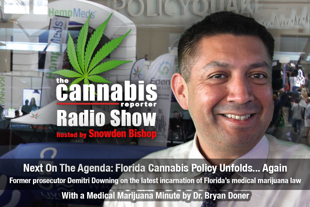The Cannabis Reporter Radio Show - Florida Cannabis Policy Unfolds Again with Demitri Downing