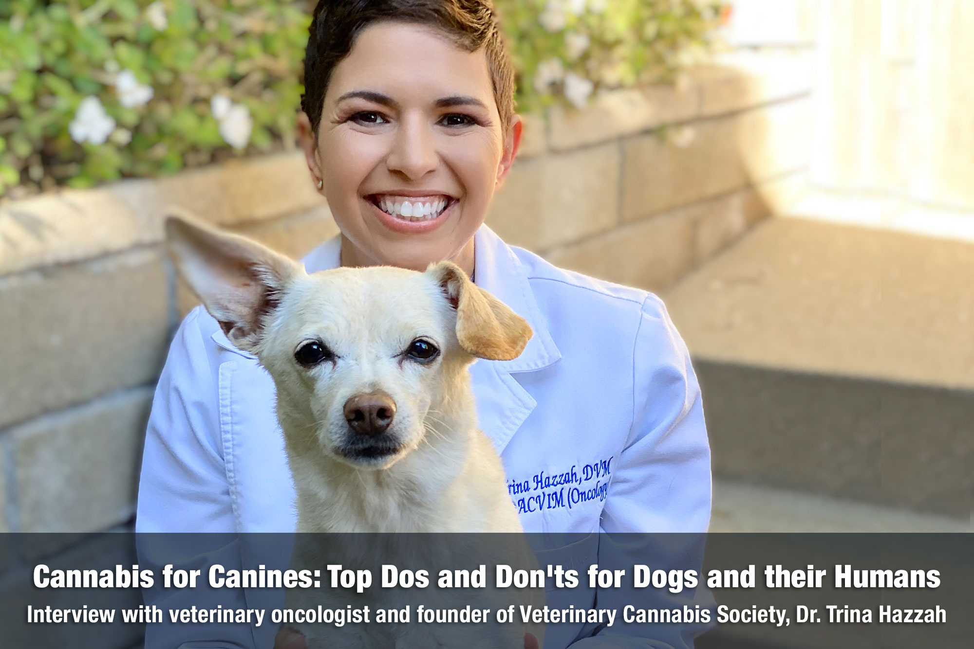 Veterinary Oncologist Dr. Trina Hazzah posing with her dog on The Cannabis Reporter Radio Show hosted by Snowden Bishop